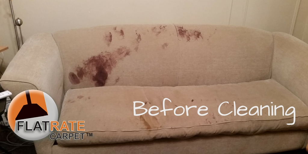 Removing Blood Stains From A Sofa Flat Rate Carpet S Blog